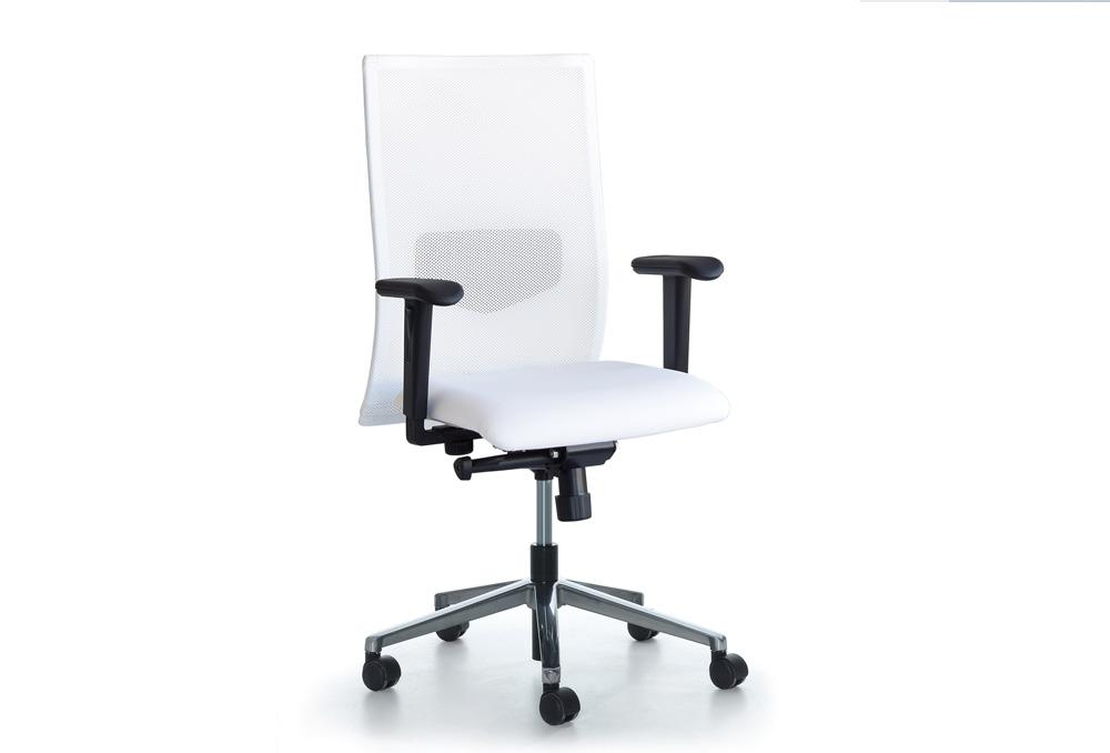 Κάθισμα Εργασίας Dromeas Smart  Πλάτη Δίχτυ Λευκό Δερματίνη Λευκή